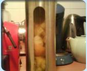 Rhum Ananas & Kumquats